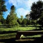 Park Photography image