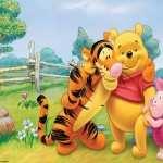 Winnie The Pooh widescreen