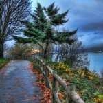 Park Photography PC wallpapers