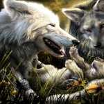 Wolf Fantasy hd wallpaper