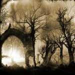 Dark Fantasy free wallpapers