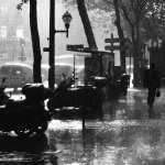 Rain Photography new wallpapers