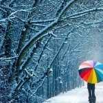 Umbrella Photography image