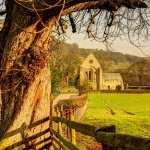 Valle Crucis Abbey download wallpaper