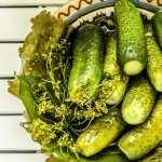 Cucumber free