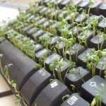 Keyboard high definition photo