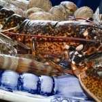 Lobster Food hd desktop