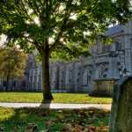 Winchester Cathedral desktop wallpaper