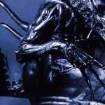 Alien Vs. Predator photos