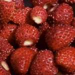 Strawberry high definition photo