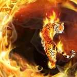Tiger Fantasy full hd