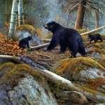 Bear Artistic wallpapers for desktop