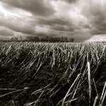 Black and White Photo hd photos