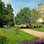 Wells Cathedral images