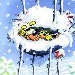 Marsupilami wallpapers for iphone