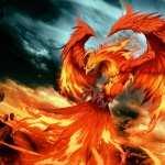 Phoenix download