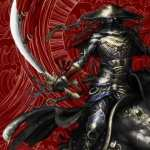 Samurai widescreen