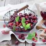 Cranberry pics