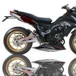 Custom Motorcycle photo