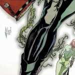 Gotham City Sirens hd desktop