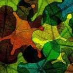 Leaf Artistic pic