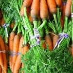 Carrot full hd