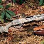 Shotgun image