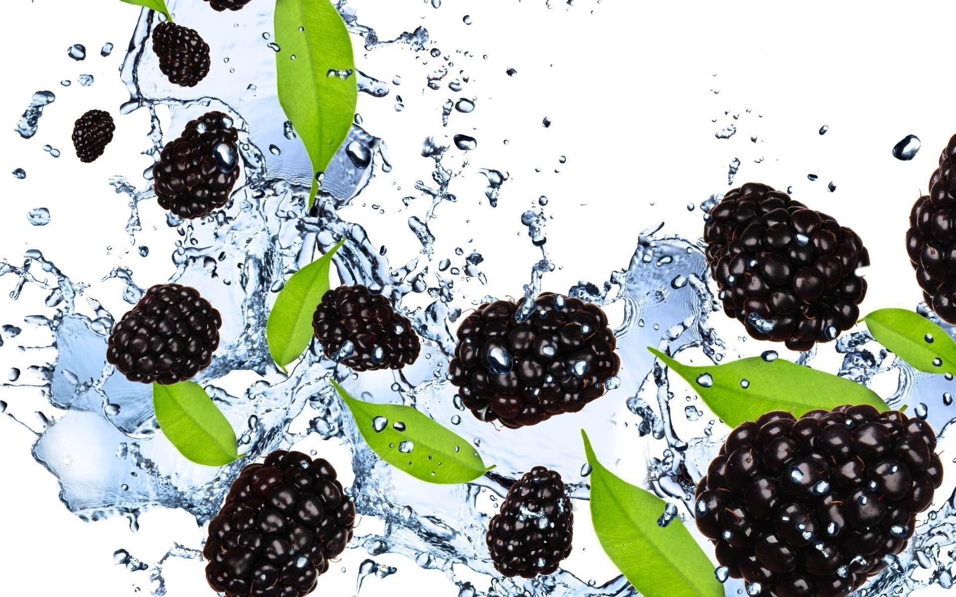 Blackberry Food wallpapers HD quality