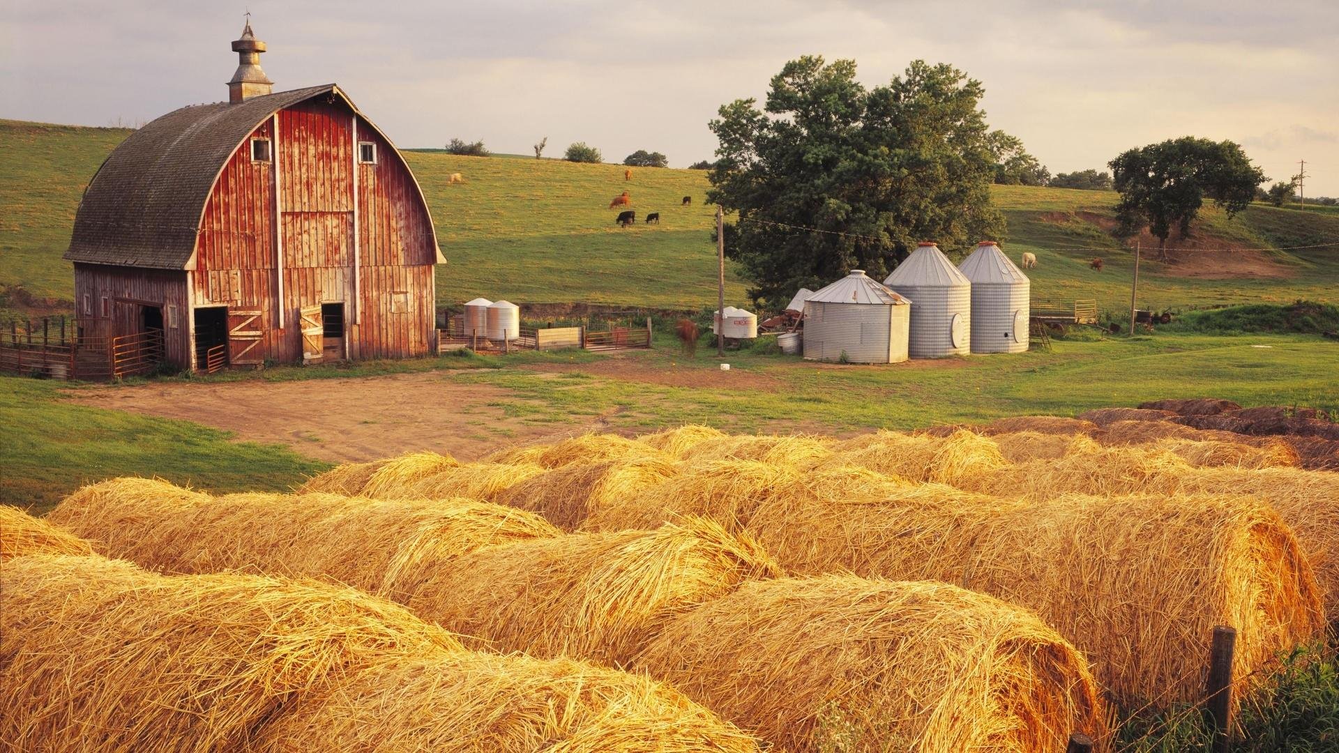 Farm wallpapers HD quality