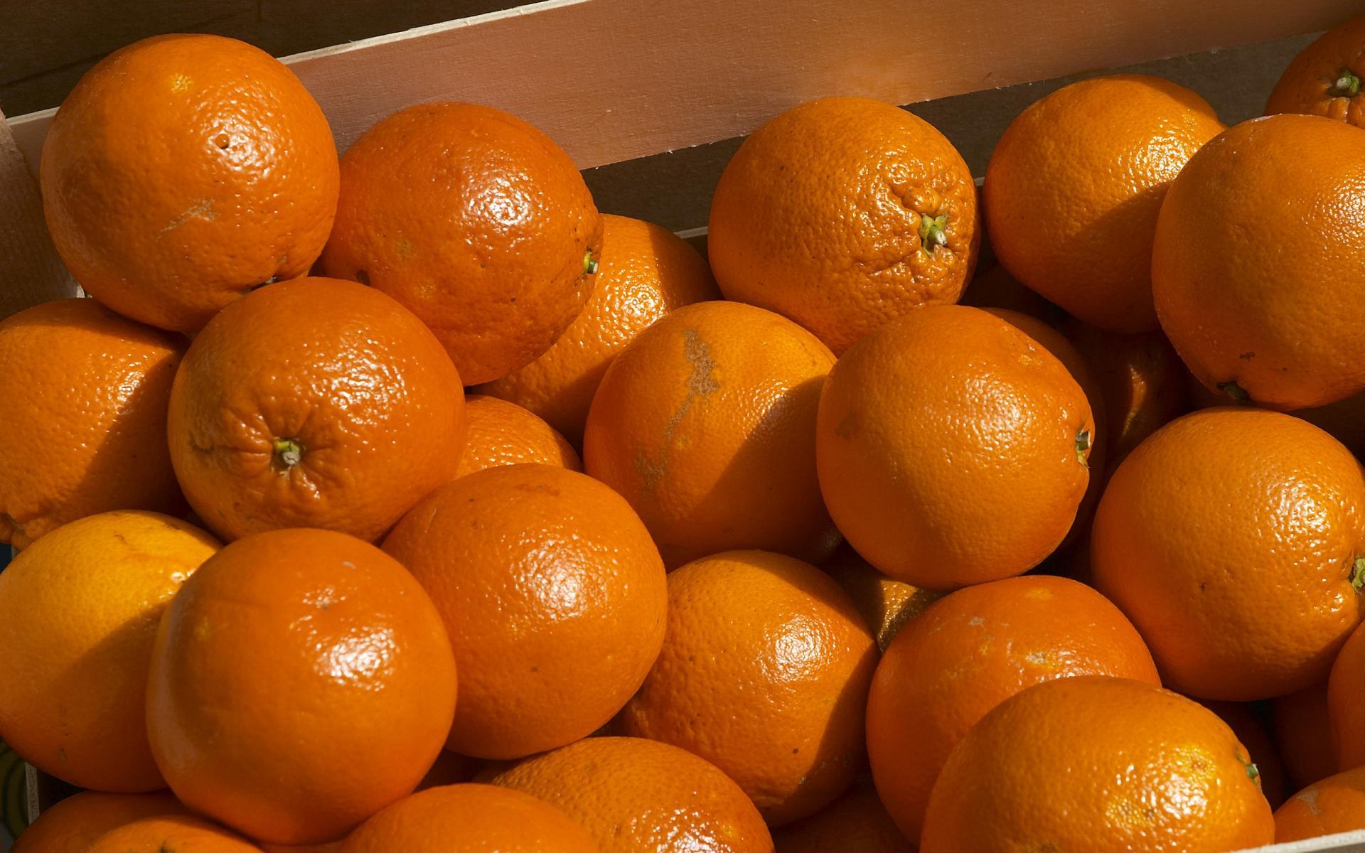 Orange Food wallpapers HD quality