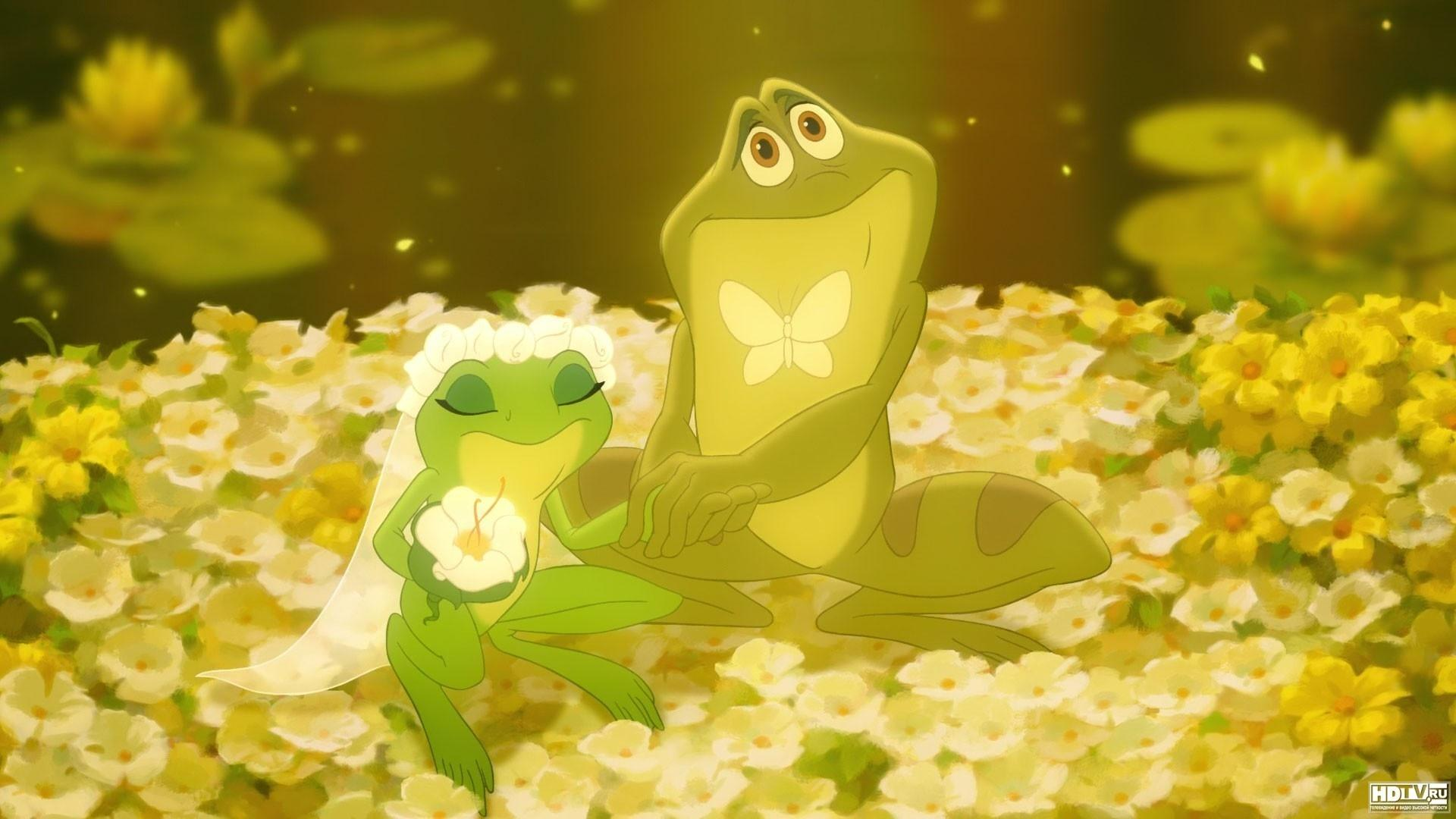 The Princess And The Frog wallpapers HD quality