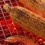 Barbecue new wallpaper