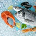 Seafood wallpapers hd