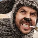 Wilfred free download
