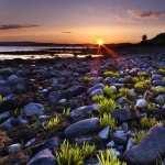 Coastline Photography image