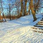 Winter Photography desktop