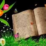 Book Artistic pics