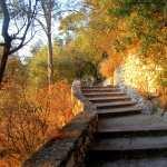 Stairs pics