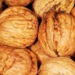 Walnut images