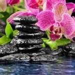 Zen wallpapers for desktop