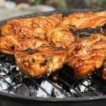Chicken Food widescreen