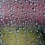 Raindrops Photography photos