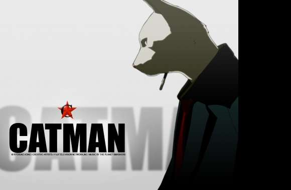 Catman wallpapers hd quality