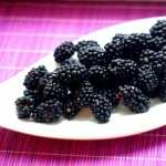 Blackberry Food wallpapers