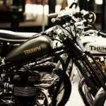 Triumph hd pics