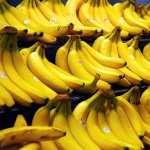 Banana free wallpapers