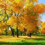 Fall Photography new wallpapers