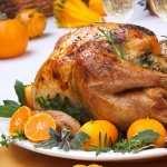 Chicken Food hd photos