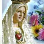 Mary download wallpaper