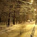 Winter Photography 1080p